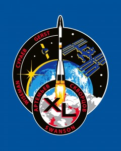 EXP 40_A_patch